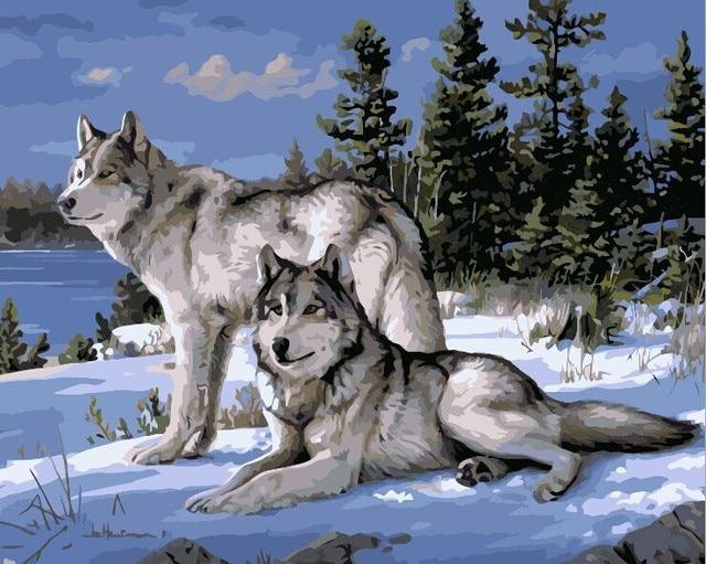 Lobo animales bricolaje pintura by los kits de pintura sobre lienzo ...