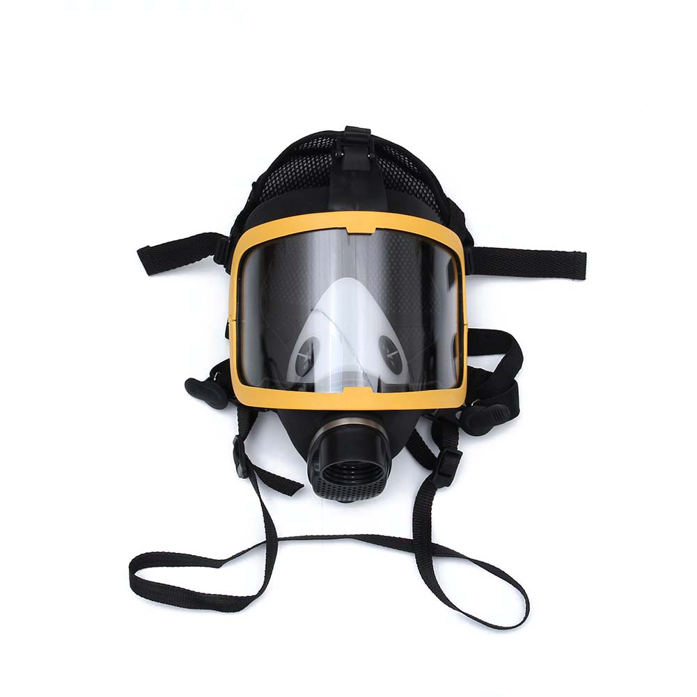 Newly Electric Supplied Air Fed Full Face Gas Mask Constant Flow Respirator System DeviceNewly Electric Supplied Air Fed Full Face Gas Mask Constant Flow Respirator System Device