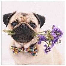 Diamond Painting Dog 5D Diy Cross Stitch Embroidered Animal Mosaic Kit Custon Photo And Drop Shopping