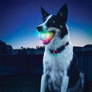 LED Glowing Streak Hund Ball Blinkt Pet Spielzeug Lichter Up Liefert Für Nacht Spielen spielzeug für hunde honden speelgoed jouet chien