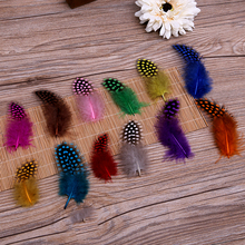 50pcs/lot Colored dots of feathers Jewelry decoration feather material handmade clothing accessories 12 colors AC054