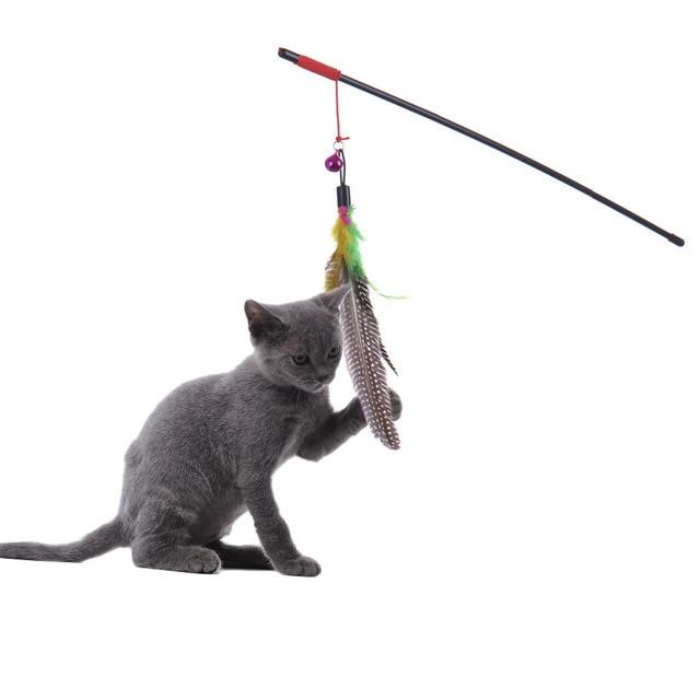 cat toy fishing pole
