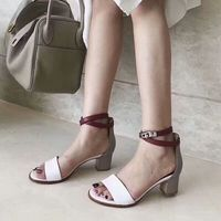 Roni Bouker Drop Ship Fashion Spring Sandals Ladies Summer Sexy Gladiator Dress High Heels Woman Square Heel Ankle Strap Shoes