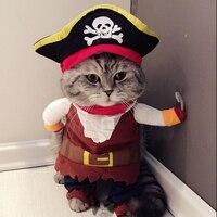 Grappige katten piraten kostuum