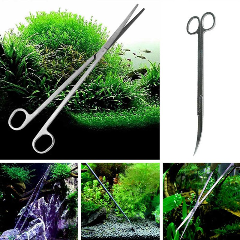 Aquarium Maintenance Tools Kit Tweezers Scissors For Live Plants Grass  Curve & Straight Tweezers Curved Scissors Tools 5 Styles