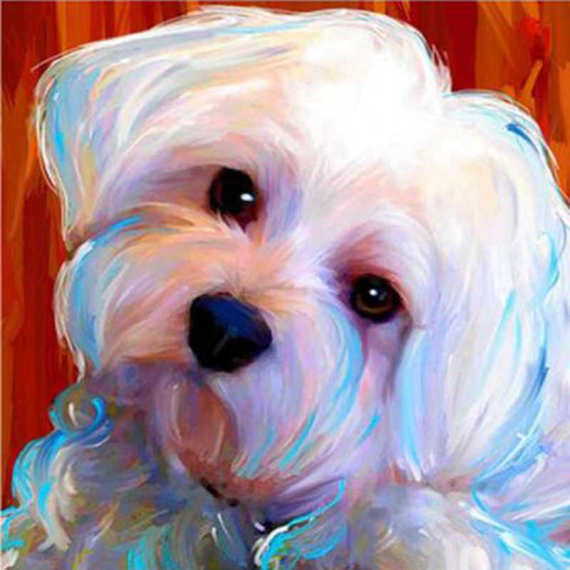 חיק כלבי מלטזית כלבים מלא כיכר יהלום רקמת פרח 5d diy יהלומי ציור מלא עגול תרגיל ריינסטון YY