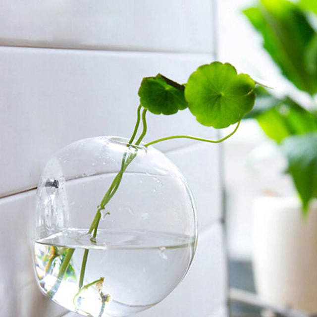 Online Shop Hanging Wall Vases Plant Flower Hanging Glass Vase