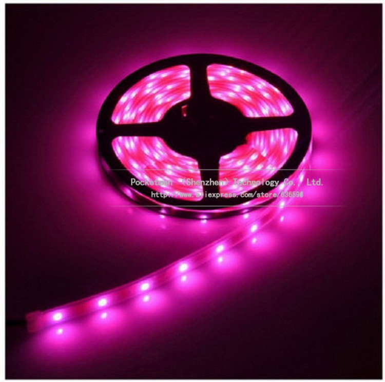 LED Strip 5m/lot no waterproof 5m 300 LED strip 5050 60LED/ m 12V SMD flexible light cold white warm white red blue yellow RGB