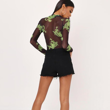 Mesh See Through Skinny Bodysuit