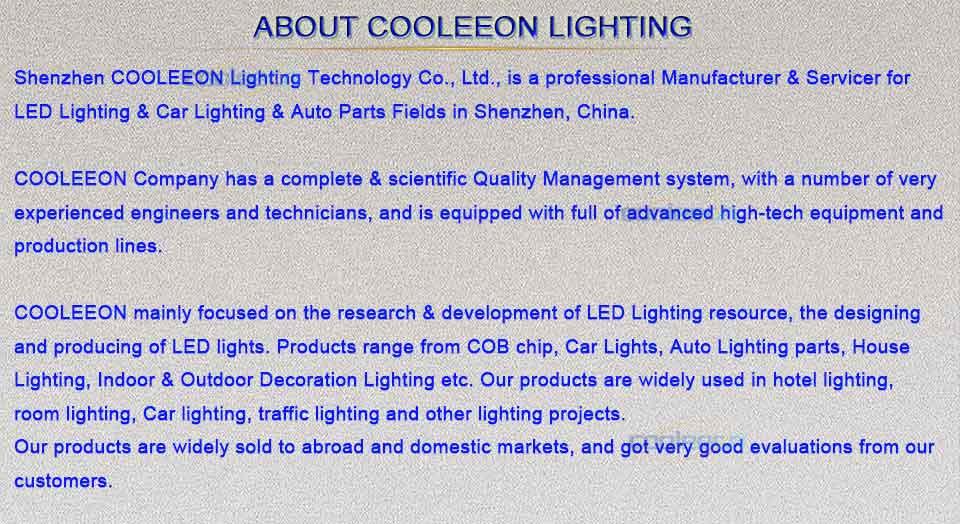 led light bulb lamp string lights led lighting (1)