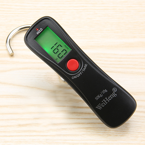 Portable Digital Luggage Hanging Scale (10g/50kg)