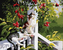 MaHuaf-W235 cats lying on baluster Acrylic Paint By Numbers Oil Painting Gift Coloring By Numbers