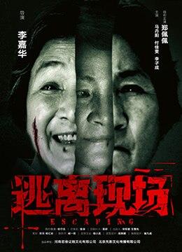《逃离现场》2017年中国大陆犯罪,惊悚电影在线观看