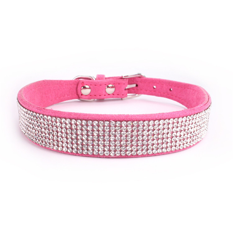 dogs collar (1)