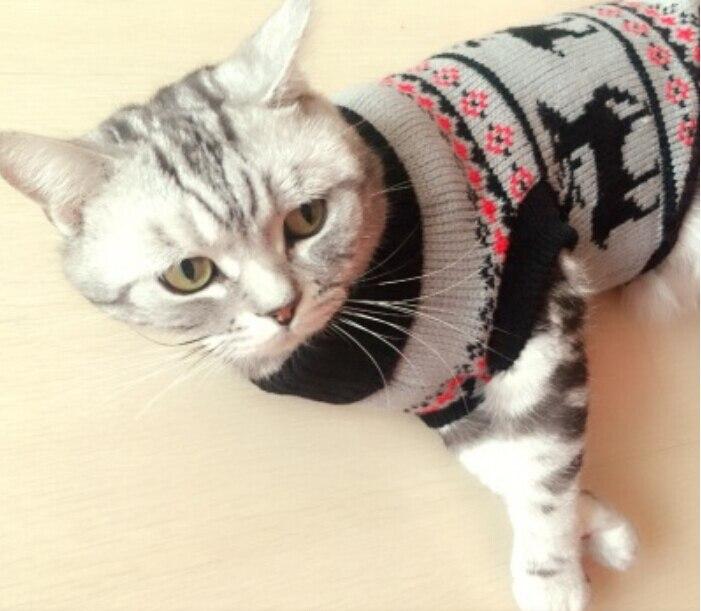 selezione migliore 2280f fe161 US $6.99 30% di SCONTO|Nuovo Natale Deer Pet Prodotto Caldo Maglieria Gatto  Maglione Pet Maglione Cappotto Per Il Piccolo Cucciolo Cani Gatti X'mas ...