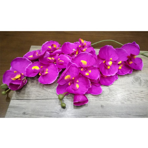 Image 5 - Artificial de seda branco orquídea flores borboleta alta qualidade traça phalaenopsis falso flor para casamento decoração do festival casa
