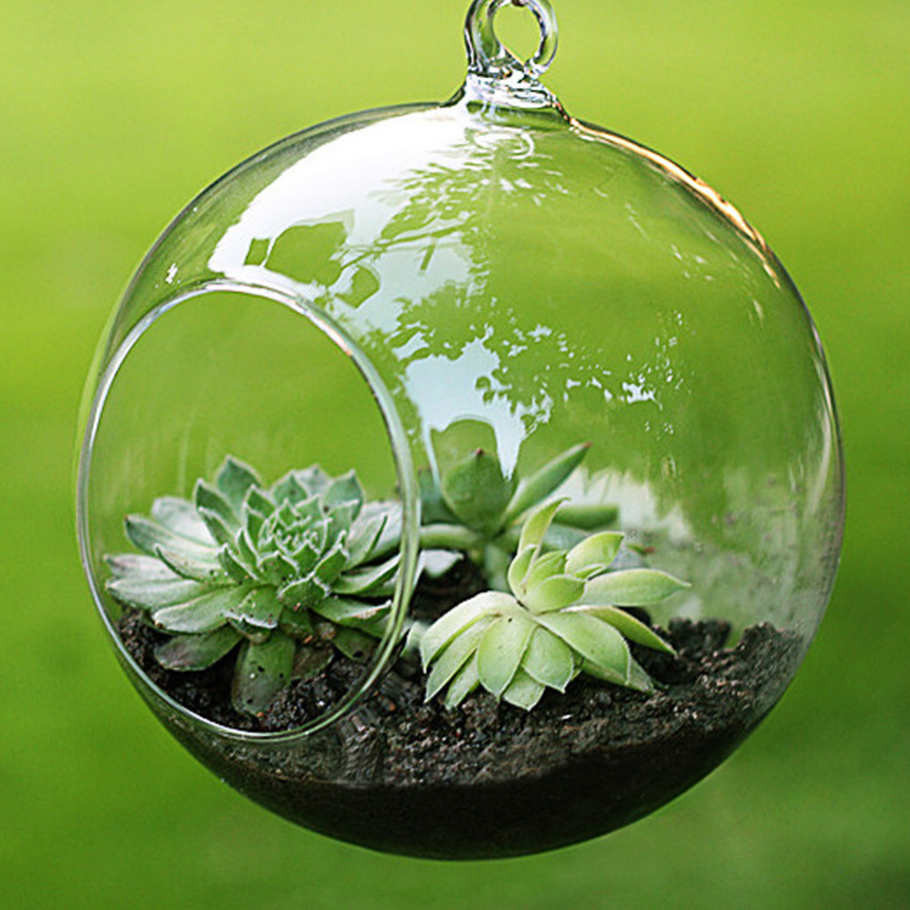 High Quality Transparent Clear Glass Round Terrarium Flower Plant Stand Hanging Vase Hydroponic Home Office Wedding Decor F1