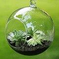 Moda Transparente Claro Rodada Vidro Terrário Hidropônico Vaso de Flor Planta Ficar Pendurado Escritório Em Casa Do Casamento Do Jardim Decoração F1