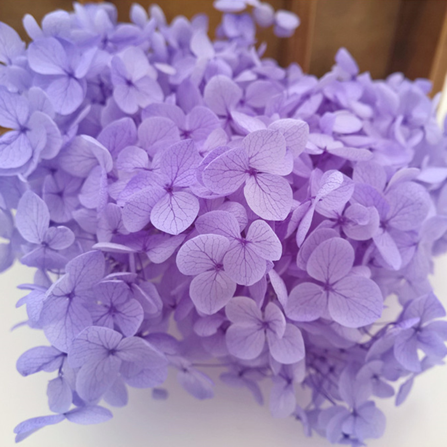 800pieces big box 19x12.5x8.5cm natural small leaf Hydrangea Dried <font><b>flowers</b></font> glass globe filler DIY charms more color to choose