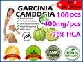 100 pcs para 30 dias de alimentação, 100% eficazes queimadores de gordura perda de peso extratos Garcinia Cambogia puro (compre 3 ganhe 1 grátis)
