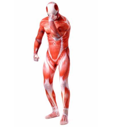 Attack On Titan Men Cosplay Costumes Titans Muscle Muscular Suit Bodysuit Bertolt Hoover Lycra Flesh Zentai Halloween Costume