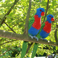 Amigurumi Rainbow Lorikeet  crochet baby shower   house room decrotive, gift for freind,photo use