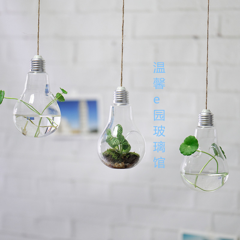 Set Of 3 Light Bulb Glass Terrariumhanging Air Plant Bulb
