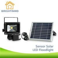 New Big Promotion Solar Power LED Flood Night Light Waterproof Outdoor Garden Decoration Landscape Spotlight Wall