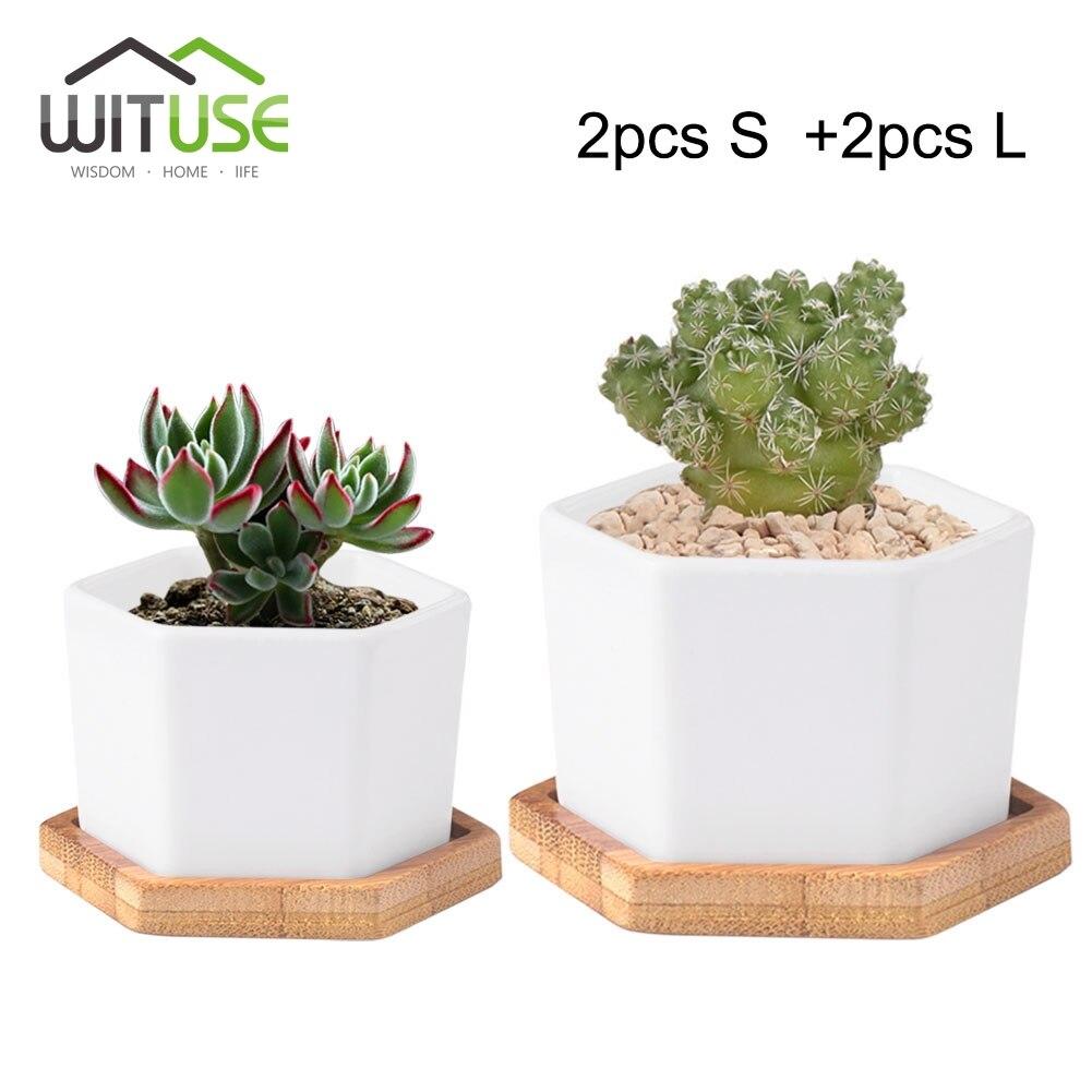 online get cheap bonsai pots aliexpress com alibaba group wituse 4pcs s l hexagon bonsai pot white ceramic potted flower plant pot succulent desktop