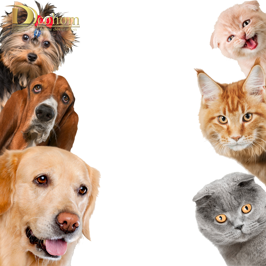Hot Funny Animal Cat Dog 3D Wall Stickers Baby Room Living