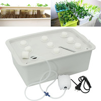 9 Holes Plant Hydroponic kit Garden Planter System Indoor Cabinet Soilless Cultivation Box Seedling Grow Kit Nursery Pot