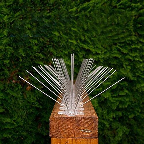 Premium spread bird spikes Stainless Steel Pigeon Spikes Anti Bird Anti Pigeon Spike Scare Pigeons Bird