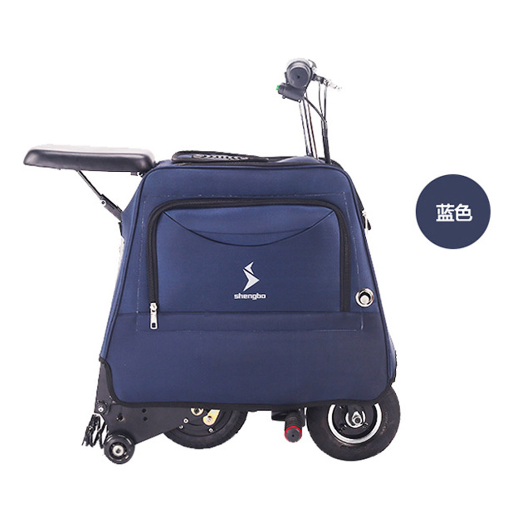 LUGGAGE SCOOTER (18)