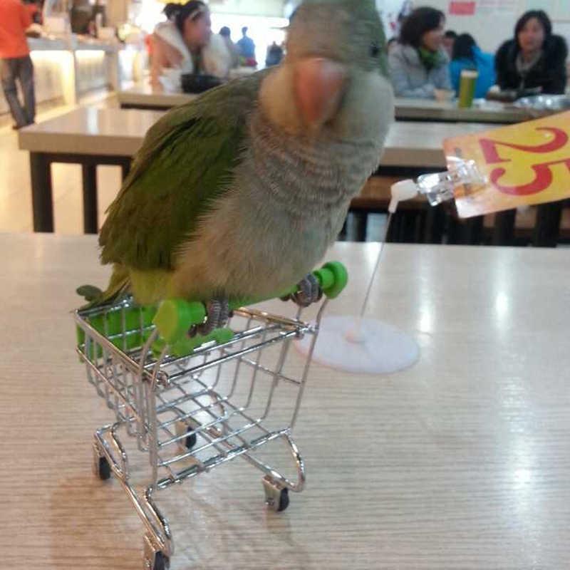 Misterolina Cockatiel papağan kuş oyun standı tırmanma süpermarket alışveriş sepeti aşk kuşlar oyuncaklar Pet malzemeleri rastgele renk