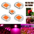Full Spectrum LED Chip Grow Light High Power 100W 50W 30W 20W 10W 380NM-840NM Growth Lamp Bulb  for Indoor Plant Seeding