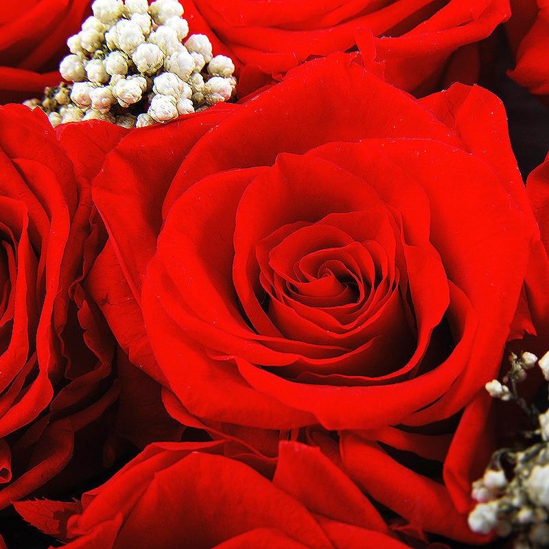 valentine jour rose rouge conserver les fleurs roses en boîte
