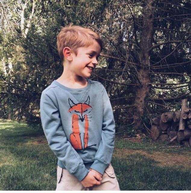 2015 autumn and winter new long sleeve Cartoon fox sweatshirt creative brand baby hoodies bobo choses fashion boy girl clothing