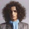 2016 Новый Вьющиеся Прическа Шатен Цвет Гламурная Мода Полный Синтетические Волосы Мужчины Парики
