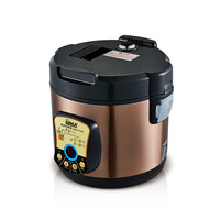 220V Automatic Black Garlic Fermenter Household DIY Zymolysis Pot Maker Black Garlic Fermenting Machine EU