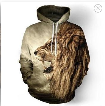 2019 Men's Hoodie Sweatshirt Ferocious Lion 3D Printed Hoodie Casual Pullover Street Top Ordinary Hipster Hip Hop Fall
