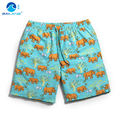 Men boardshorts Shorts Brand Summer mens Beach Shorts Men's Surf Board Short Quick Dry gym sports plus size gailang running A6