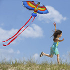 New Outdoors Fun Sports Doll 100x50cm Parrots Kite+Kite String With Plastic Handle Flying?Kite As Children Gifts