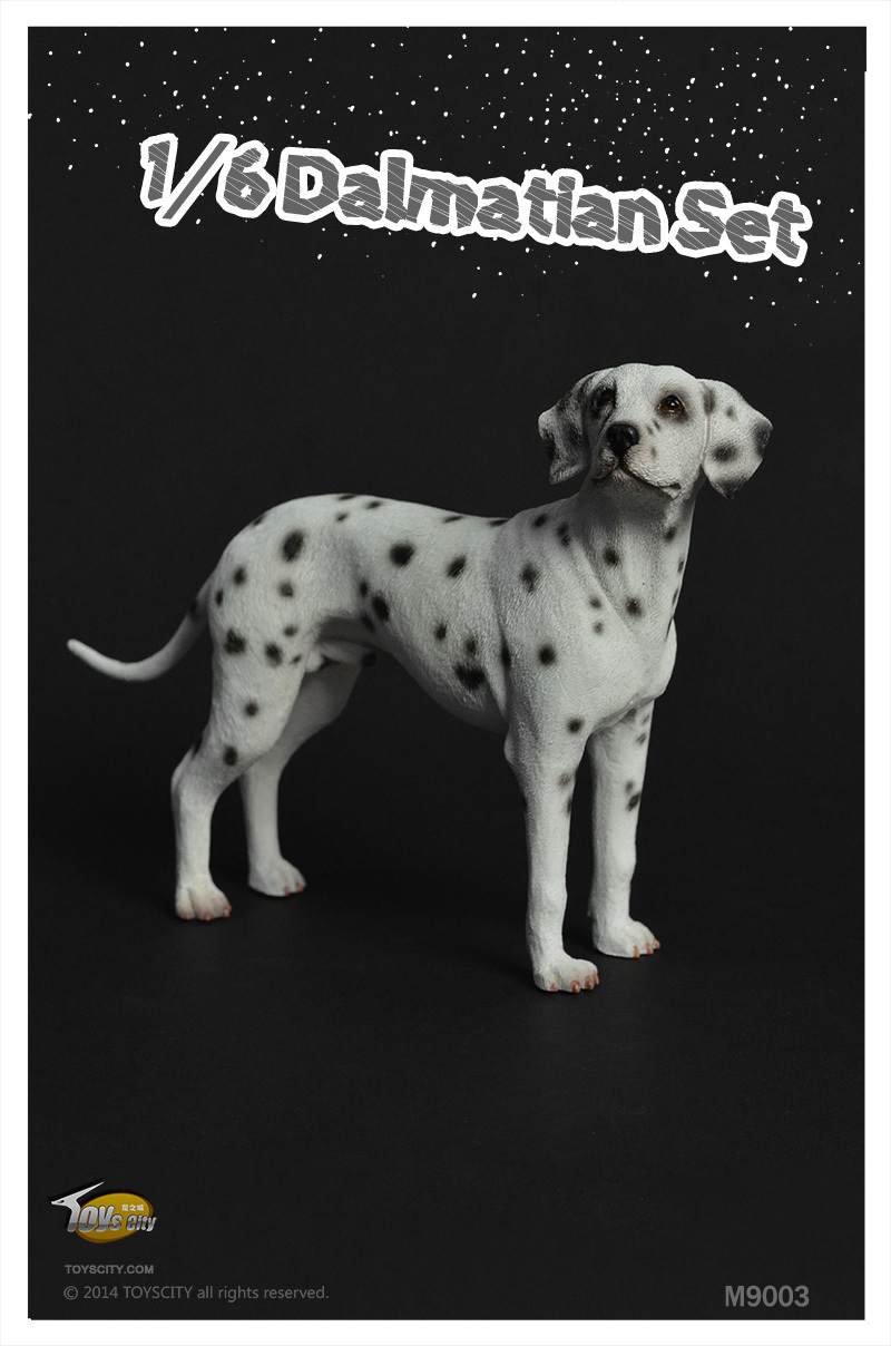 ФОТО Toyscity 1/6 scale dog model about 15cm.Dalmatians for 12