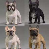Mnotht Mr.Z Real Animal Series No.5 1/6TH Scale French Bulldog Resin Statue for 12 Collectible Action Figure Scene Accessories