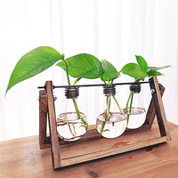 Small Fresh Transparent Glass Vase Ornaments Personalized Living Room Desk Indoor Green Hydroponic Container