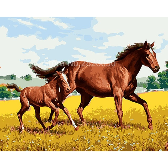 Walking Horse Family Animal By Numbers Picture Oil Paintings Framed ...
