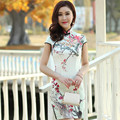 Chinese Traditional Dress Cheongsams Sleeveless Plum flower Chinese Style Dress Qipao
