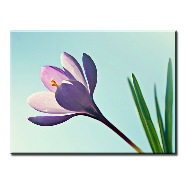 dp artisan one pink simple flowers art wall painting print on canvas for home decor paints