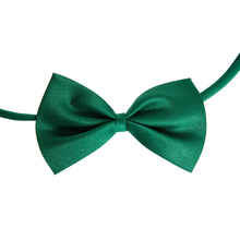 Puppy Bow / Necktie / Tie