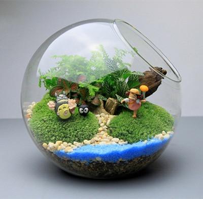 Alibaba グループ | AliExpress.comの からの 多肉植物ガラス花瓶斜め ...